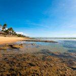 Morada Das Tartarugas, A Praia Do Forte É Repleta De Atrações