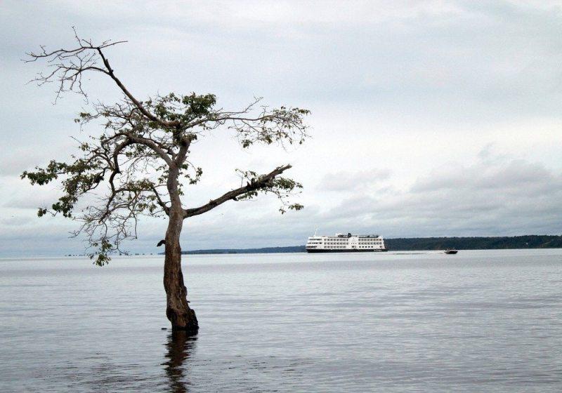 Amazonia tem praias de rios igarapes e vida selvagem