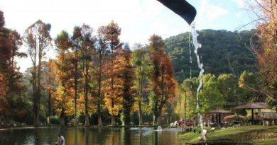 Lugares que te farão querer viajar neste outono