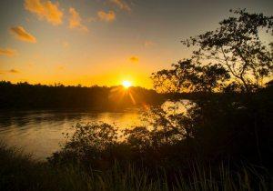 Pantanal Baiano No Rio Jucuruçu