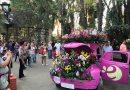 Encantos Da Expoflora Em Holambra Uma Festa Tipicamente Holandesa