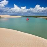 Praia Da Barra Dos Remédios, Conheça Um Pouco Mais Do Paraíso Cearense