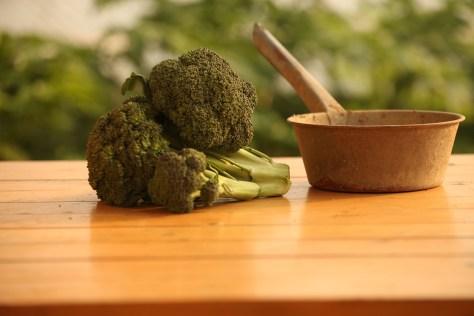 Brócolos melhorsaude.org