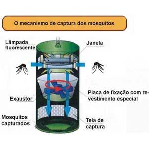 Armadilha para mosquitos melhorsaude.org melhor blog de saude