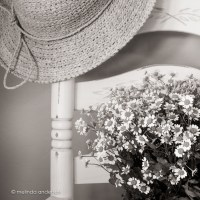 A hat, some flowers, and the chair