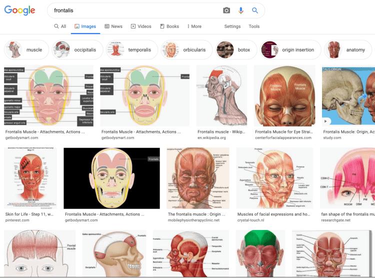 Google search example of frontalis results