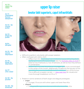 lower face cheat sheet expanded