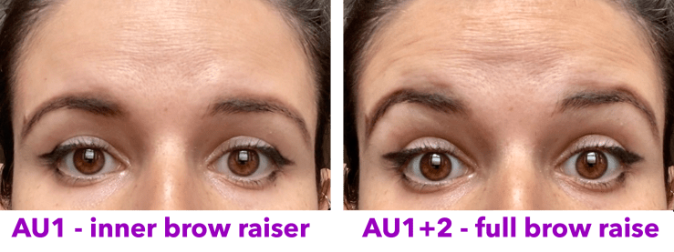 AU1 - inner brow raiser vs. full brow raise static image