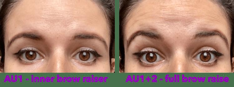 AU1 - inner brow raiser vs. full brow raise static image