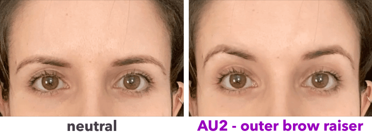 AU2 - outer brow raiser static image