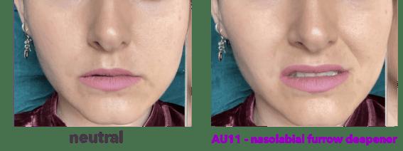 AU11 - nasolabial furrow deepener - zygomaticus minor - FACS - Facial Action Coding System - blendshape - blend shape
