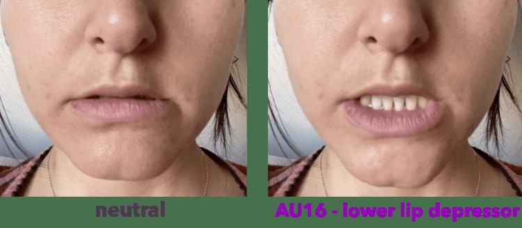 AU16 - lower lip depressor