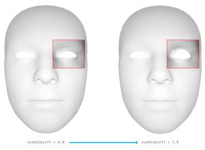 Apple ARKit - to FACS translation - eyeWide - upper lid raiser - AU5