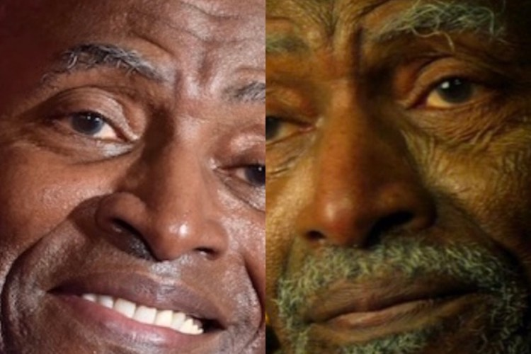 The Falcon and the Winter Soldier - Carl Lumbly actor