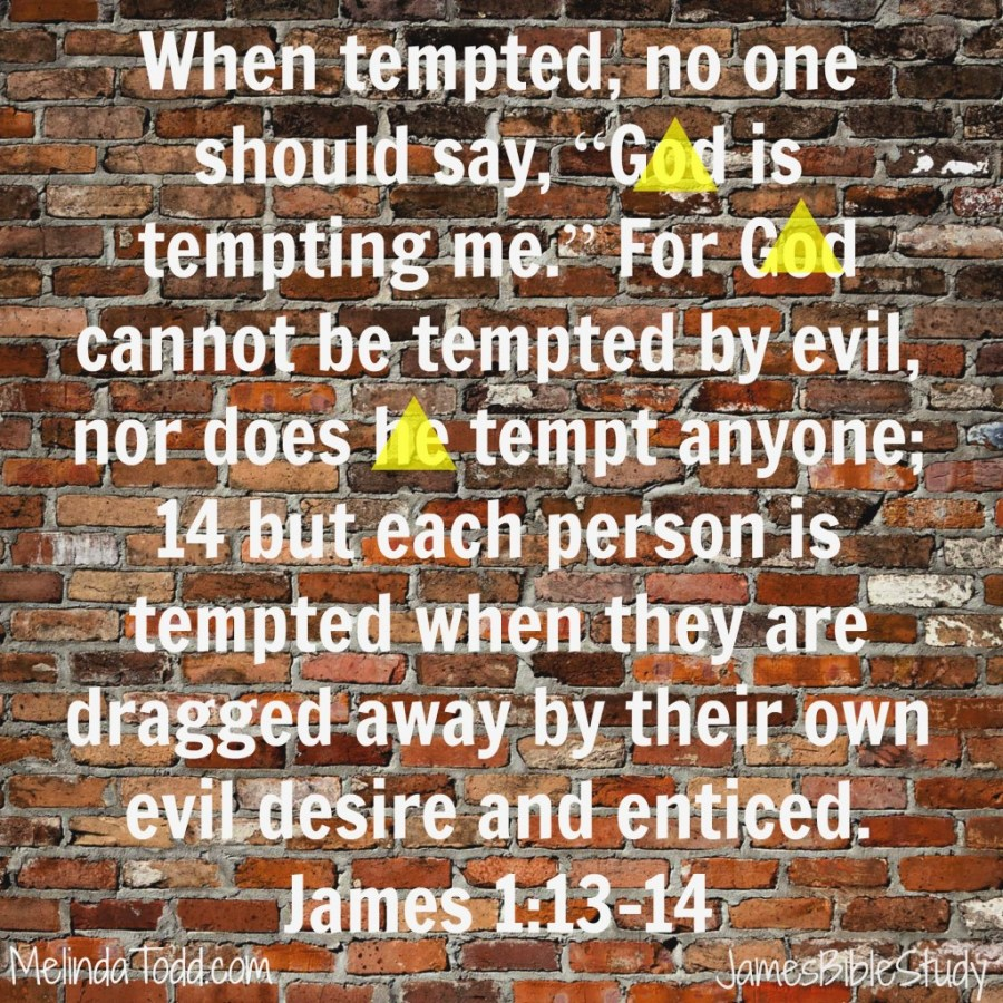 james1 verses 13-14 at MelindaTodd.com