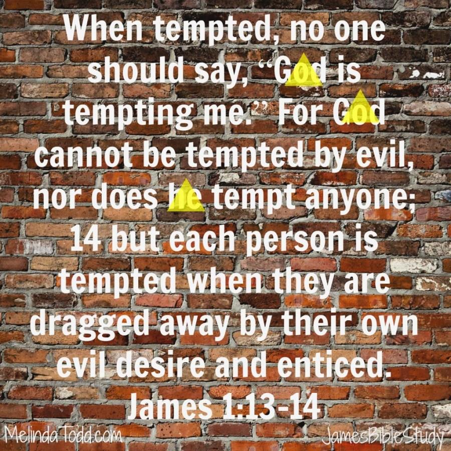 james1 verses 13-14 at MelindaTodd.com