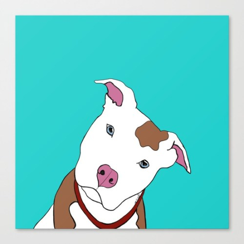 pit bull on canvas