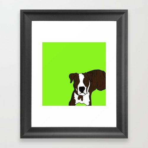 Chico the Brindled Pit Bull Framed Print