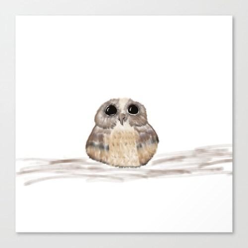 Sweet Owl Canvas Print