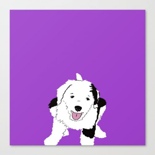 Gypsy The Sheepadoodle Canvas Print by Melinda Todd