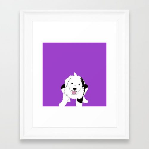 Gypsy The Sheepadoodle Framed Print by Melinda Todd