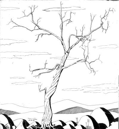 lincoln.a.ward.tree