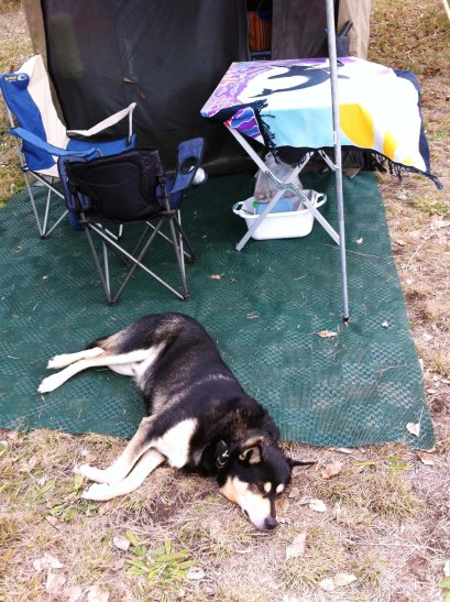 ned slept outside the tent every night