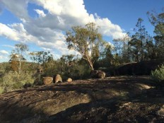 last new england days: i will miss the lichen-clad granite boulders and gwydir river sunsets but maybe not the flies 18/11/2014