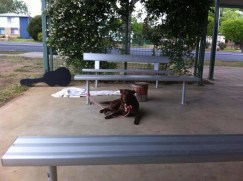 Waiting in the park in Guyra for his master: Rumble hasn't seen dad for over 3 weeks now 5/11/2014