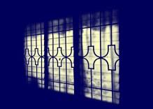 looking through the shadows