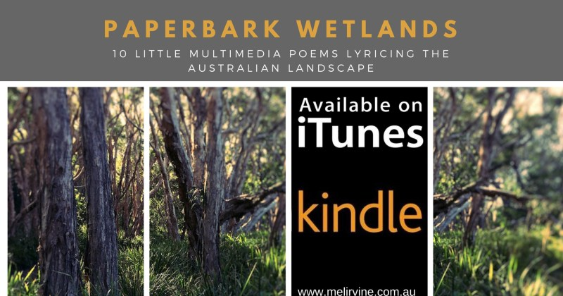 Paperbark Wetlands by Melinda J. IrvineBanner for website-2