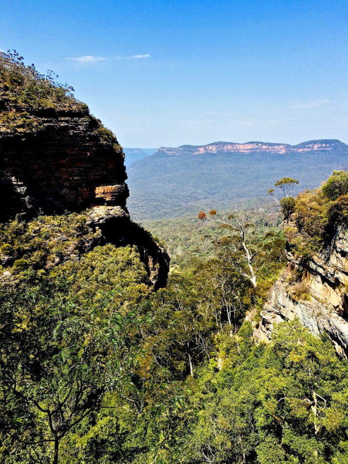 Blue Mountains at Blackheath NSW
