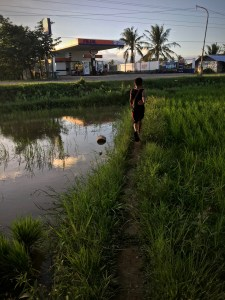 little boy running in a rice paddy