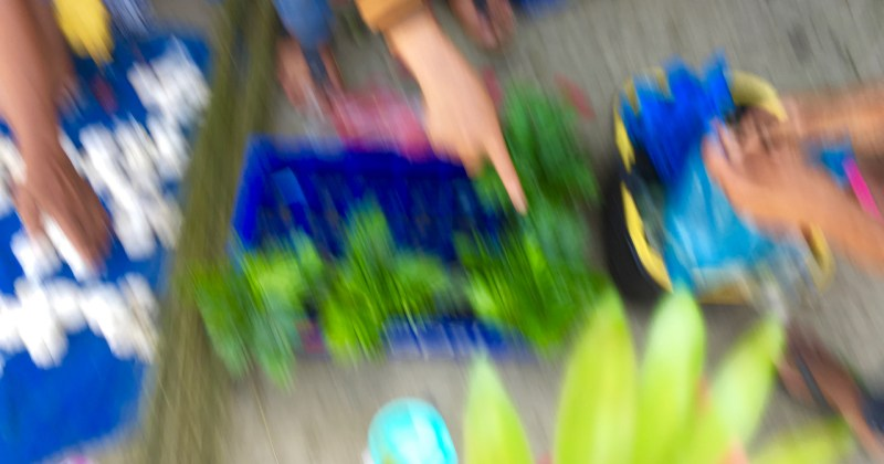 blurred shot of a woman selling plants on market day