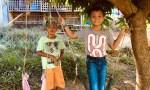 two boys under a mango tree