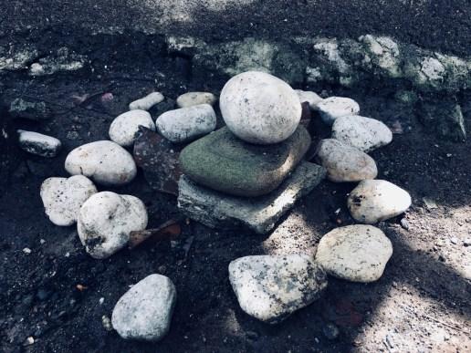 fairy garden of little rocks