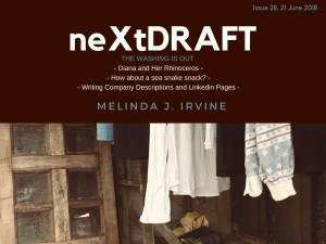 neXtDRAFT an eZine by Melinda J. Irvine Issue 28.