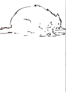 cat_sketch6