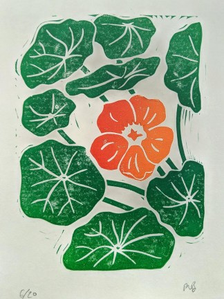 Colourful lino print by Melissa Birch showing an orange Nasturtium surrounded by dark green leaves