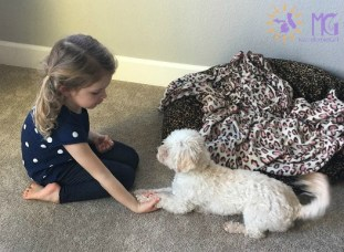 little girl holding puppy's paws diary of a dog
