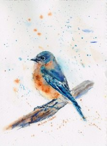 Bluebird female 041918