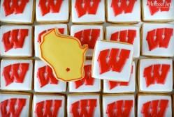 University of Wisconsin-Badgers