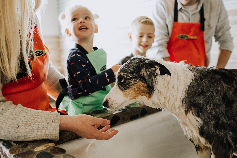 Solana Beach Dirty Dogs | DIY Dog Bathing