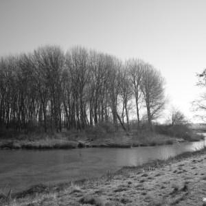Parque natural em Lelystad