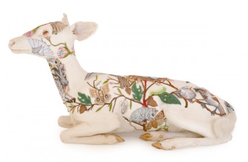 """Albino Fawn"" by Chris Roberts-Antieau"