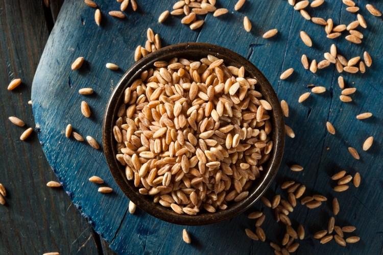 Organic Raw Farro Grain