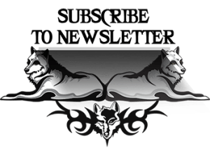 Subscribe to newsletter