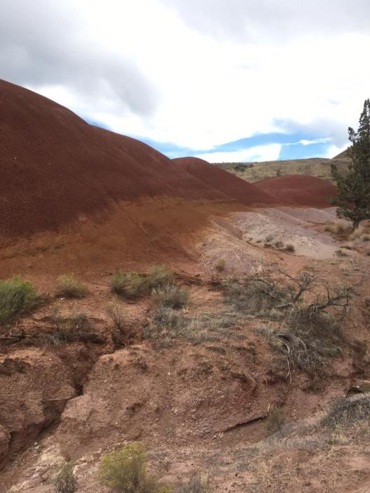 painted-hills-3