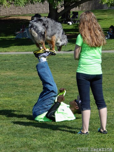 There were many events set up, some of the more exciting ones were the dog trials.