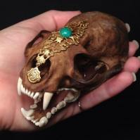 Part of the Osteo La Brea Series: Real Natural Stained River Otter Skull with Brass Accents and Jade by Jana Miller